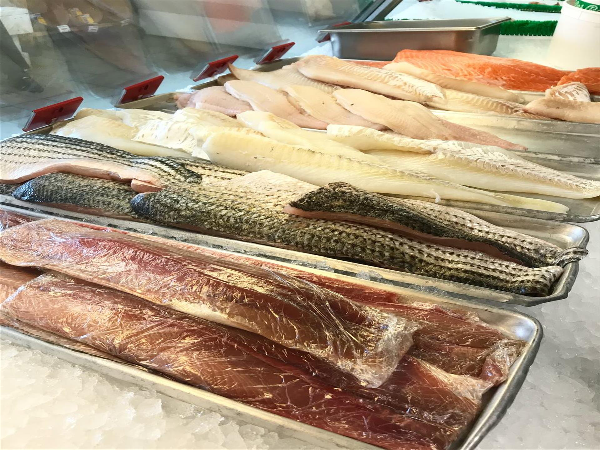 Fresh Fish Display