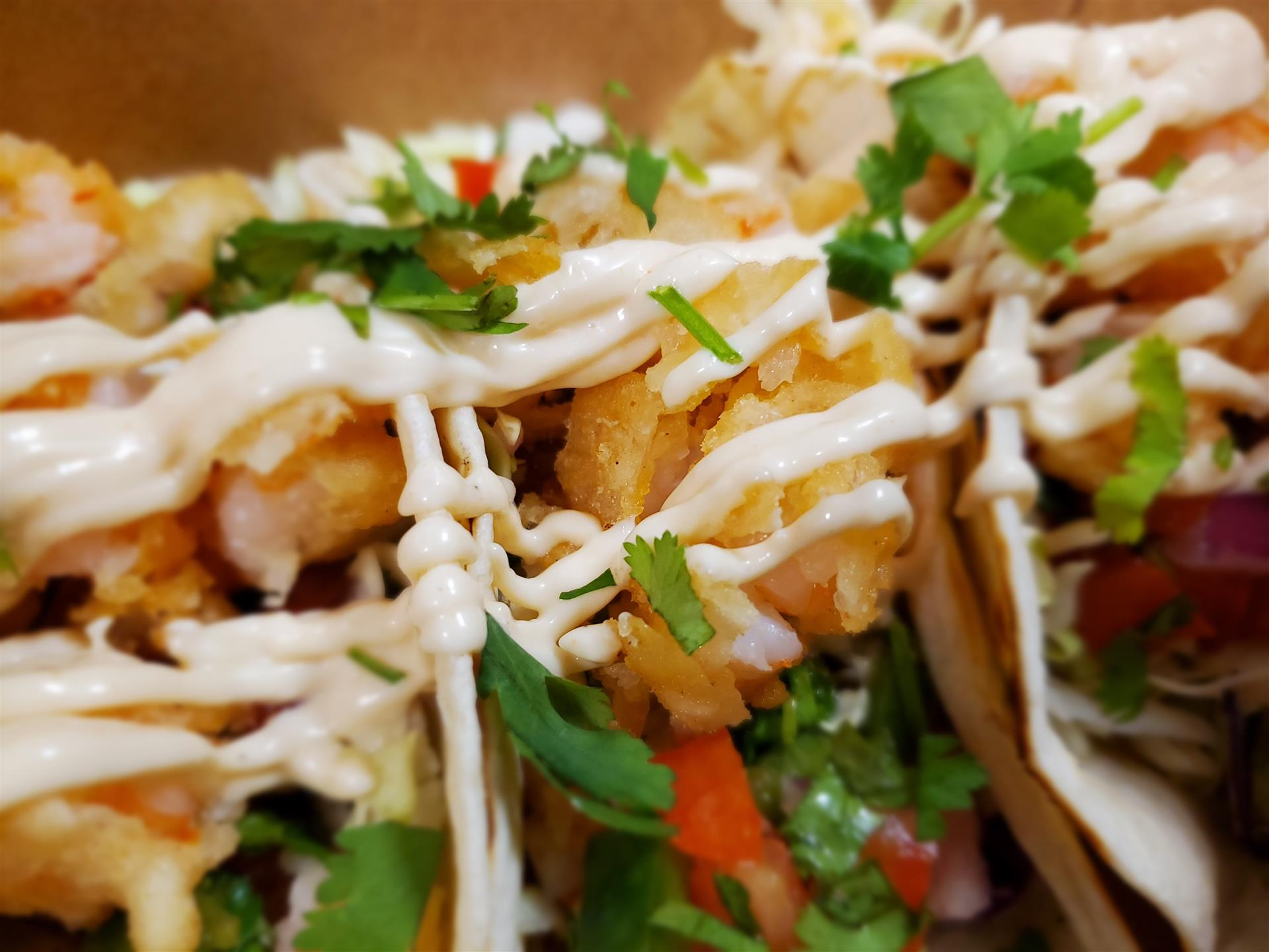 fried fish tacos, topped with salsa, cilantro, and aioli