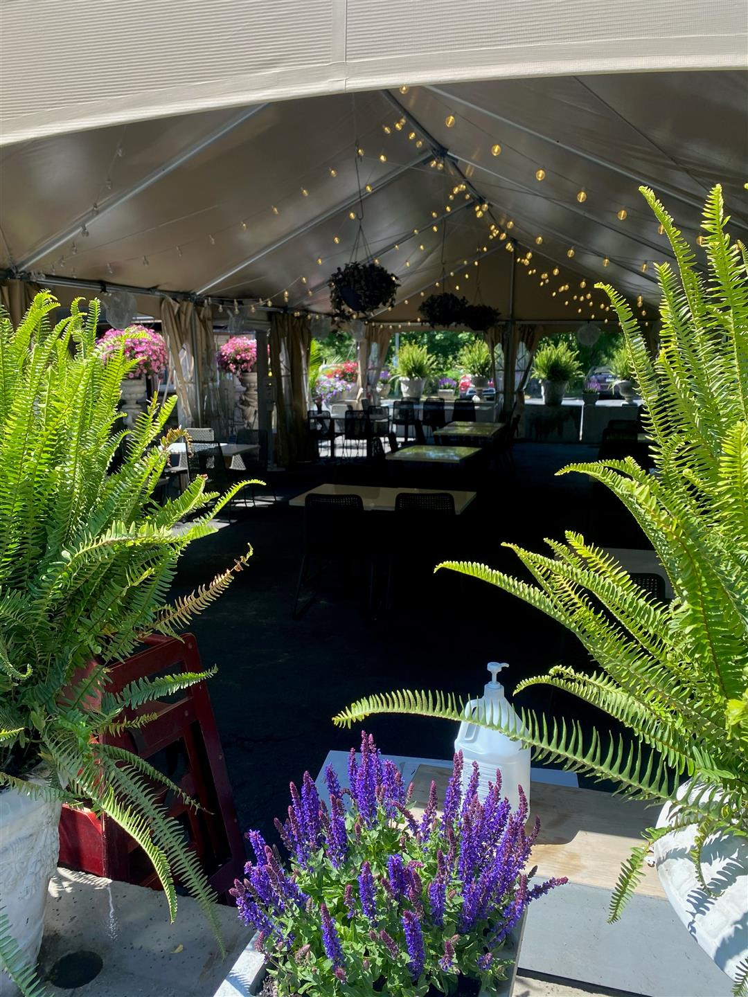 outside patio and tent