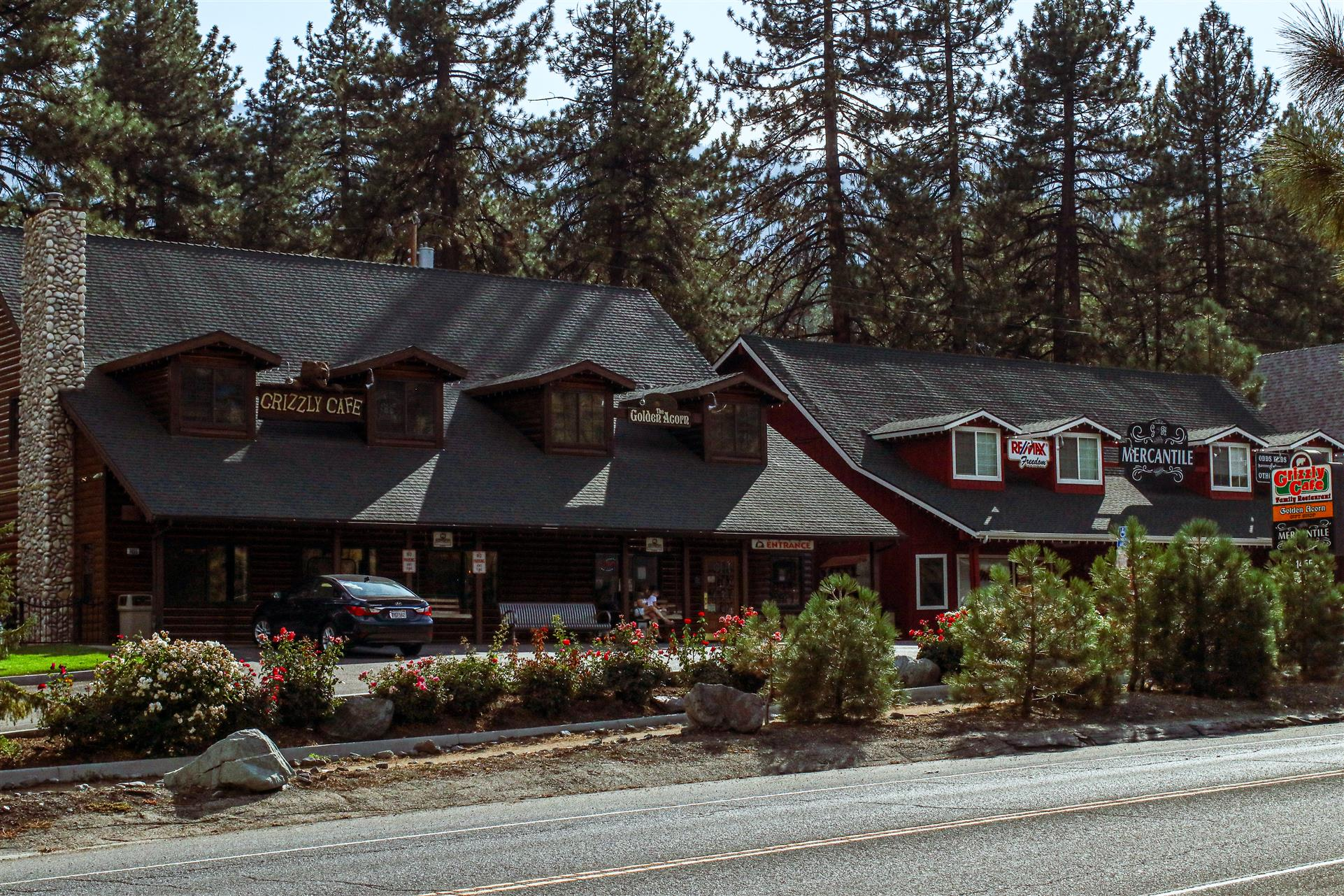 Left Side of Grizzly Cafe on the opposite side of the road
