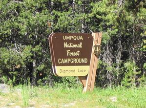 ---- US Forest Service Campgrounds (large)