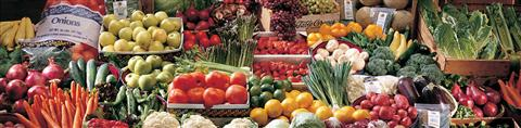---- Produce wide variety (large)