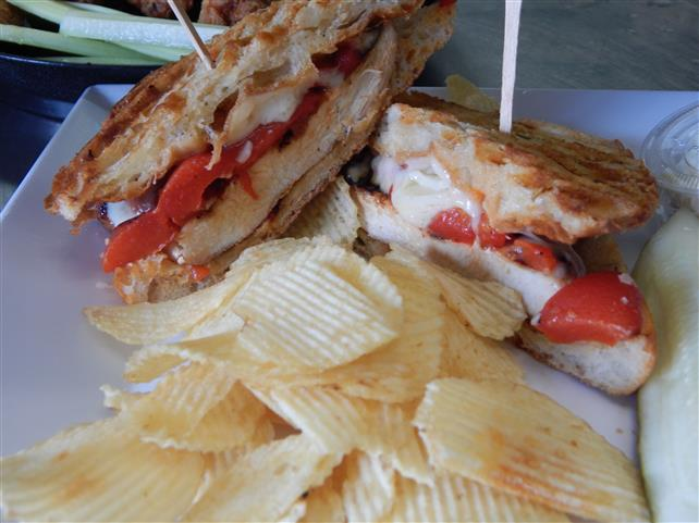 grilled chicken panini with cheese and peppers and a side of chips