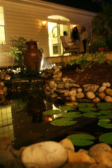garden and koi fish pond with stones and lily pads