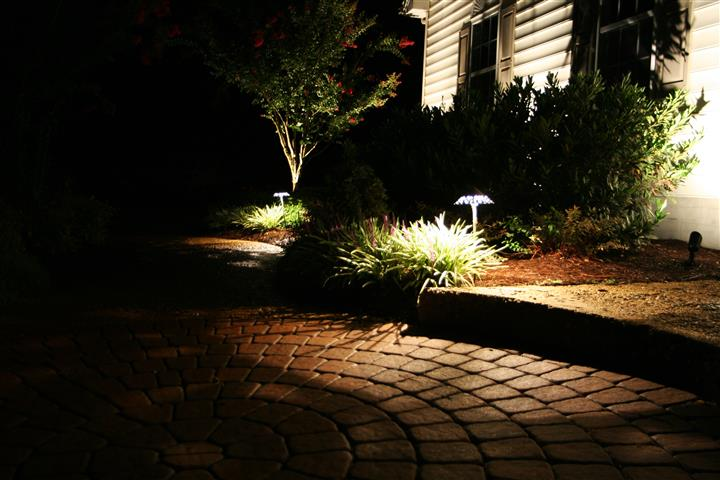 garden and back yard lit up with outdoor lighting