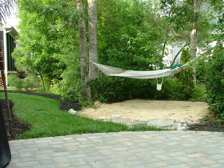 landscape with hammock hanging from trees