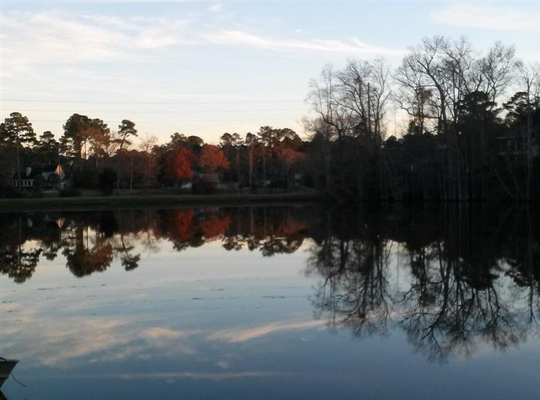view of lake outside with trees reflected in the water