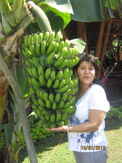 female posing with bananas