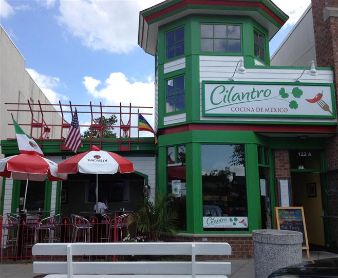outside view of cilantro