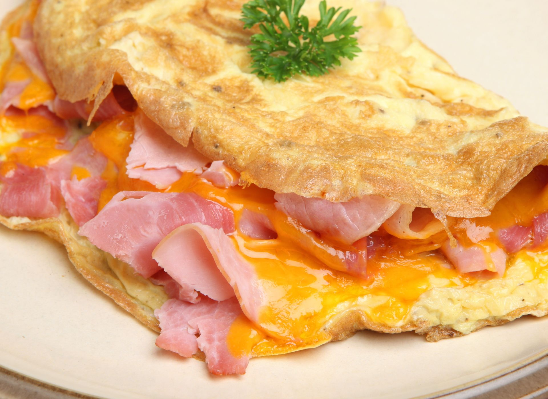 Ham and cheese omelet on a plate