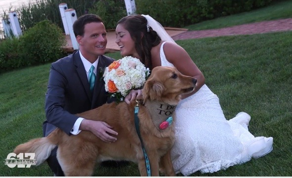 bride and groom taking photos with their dog outdoors