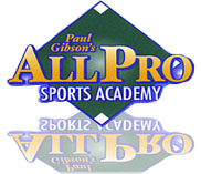 ---- All Pro 3 (large)