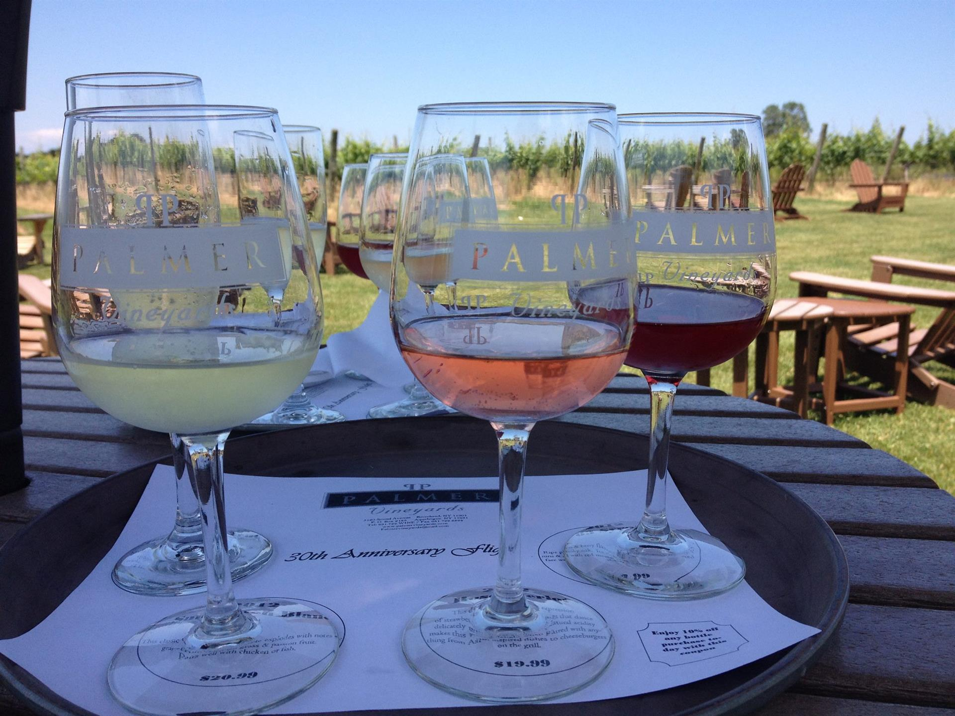 Wine glasses filled with assorted wines