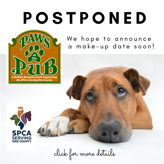 paws at the pub postponed we hope to announce a make-up date soon! click for more details. spca serving erie county