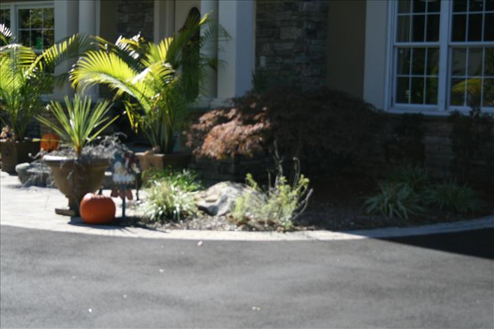 LANDSCAPING (7)