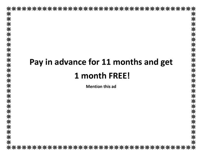 ---- Pay for 11 months get 1 free (large)