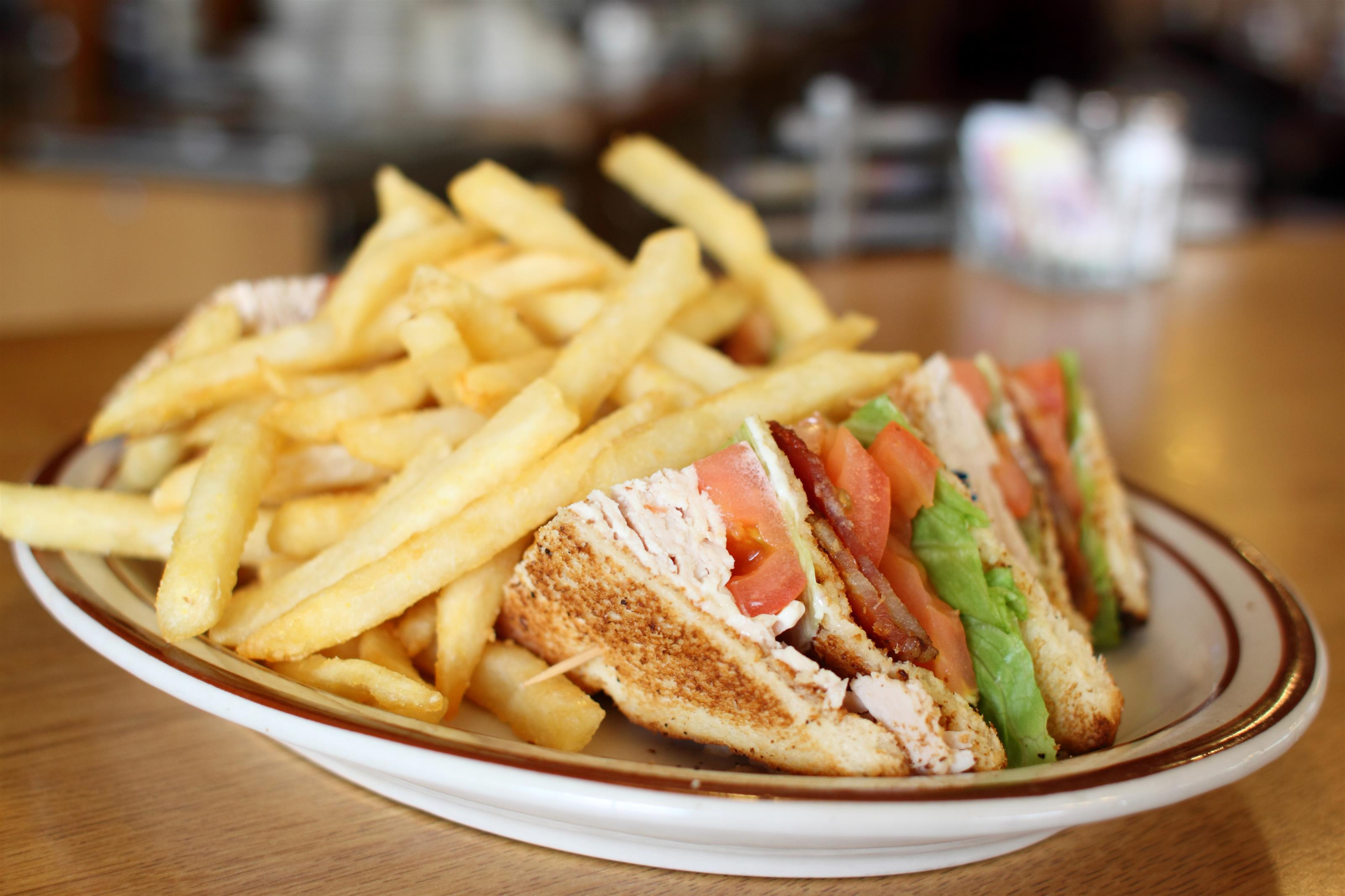 turkey sandwich with a side of french fries
