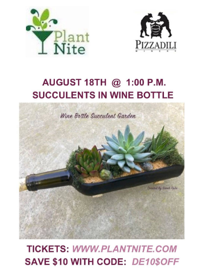 August 18th, 2019 - Succulents in Wine Bottle Plant Night