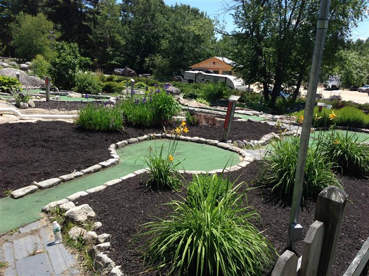 miniature golf course with plants