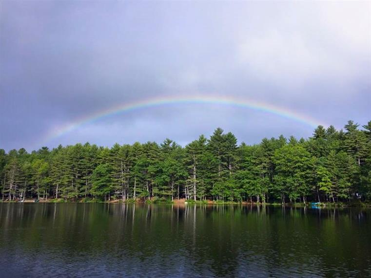 rainbow over a lake surrounded by trees