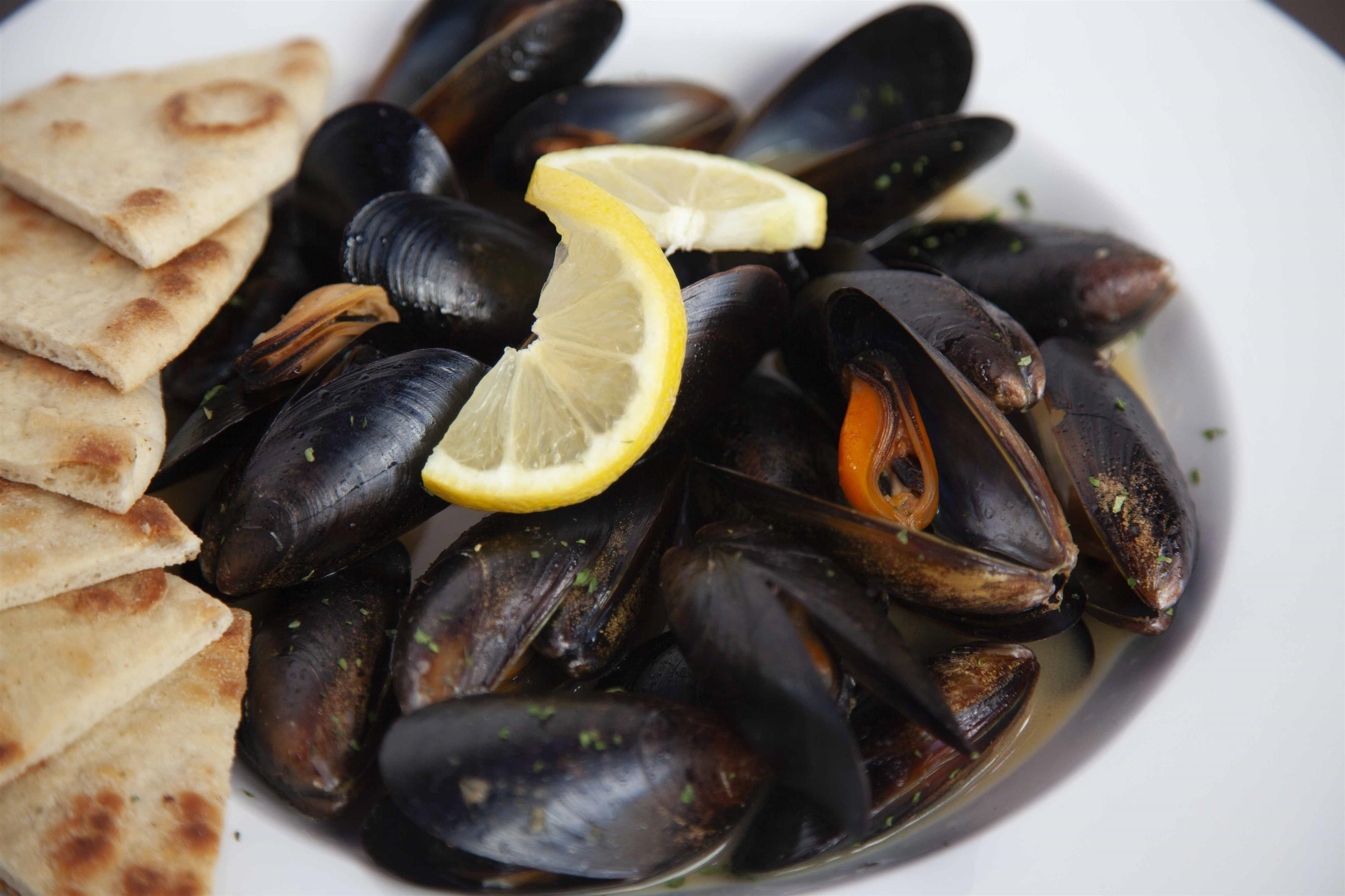 Wileys Lion Paw Mussels