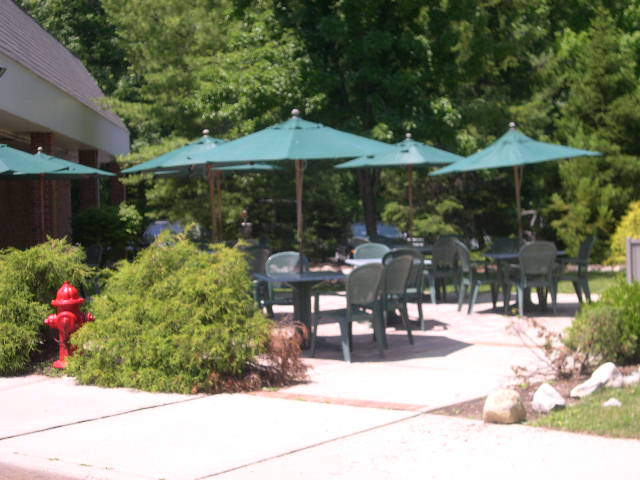 A shot of the restaurant's garden