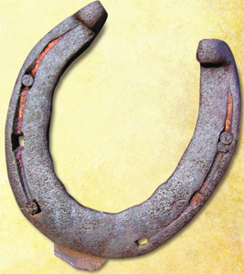 ---- horseshoe (large)