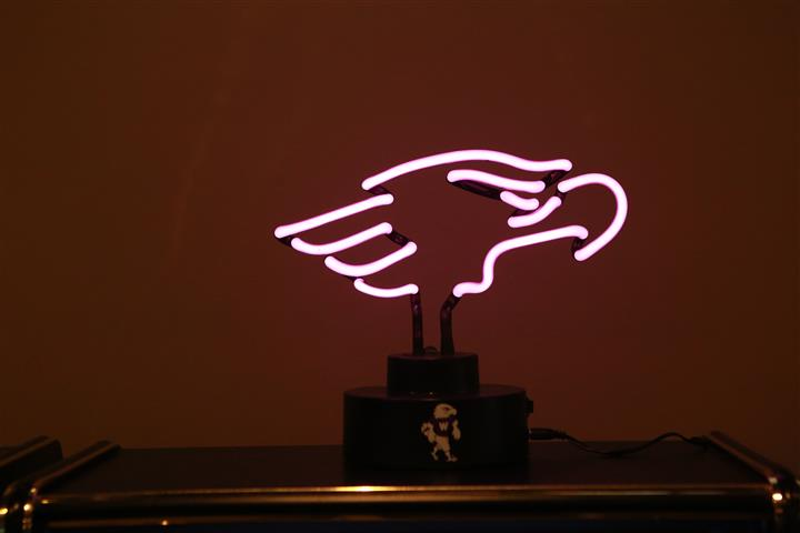 Light fixture of an eagle for University of Wisconsin.