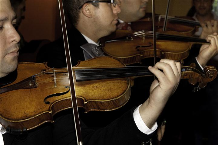 Close up of musicians playing the violin