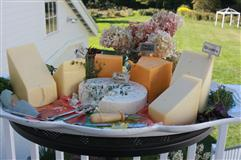 ---- Cheese Display (large)