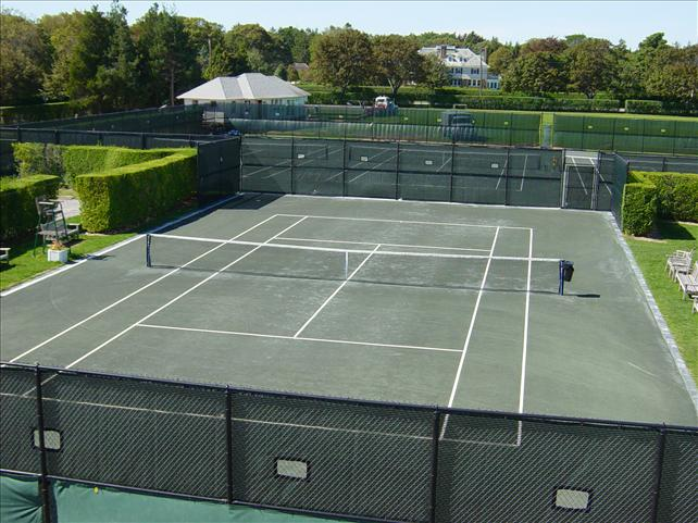 tennis court surrounded by bushes