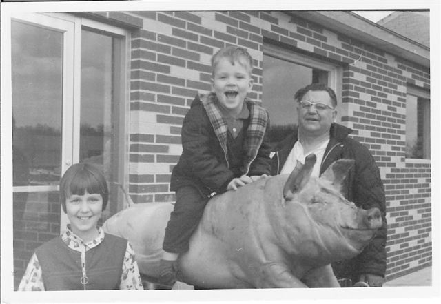 Vintage photo of Archie and two children on a pig ride.