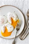 Country Fresh Eggs