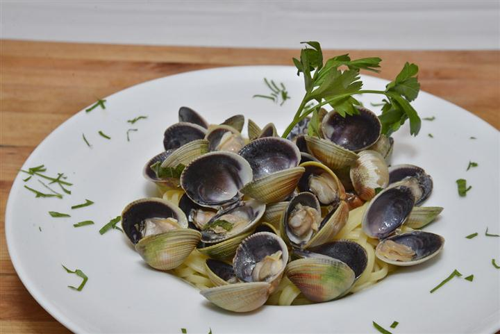 open shells on a plate