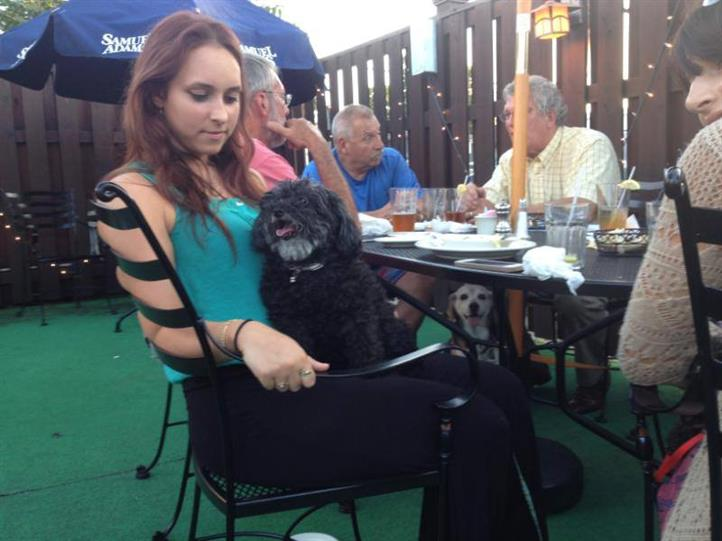 Lady with a dog in her lap at the table