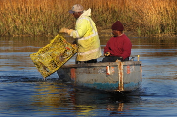 two fishermen on a boat crabbing