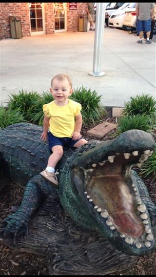 little boy posing with fake alligator