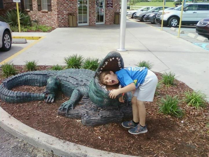 little boy posing pretending to be bit by a fake alligator