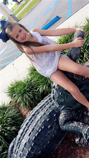 little girl posing with fake alligator