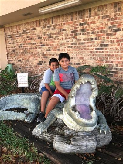 two little boys posing with fake alligator