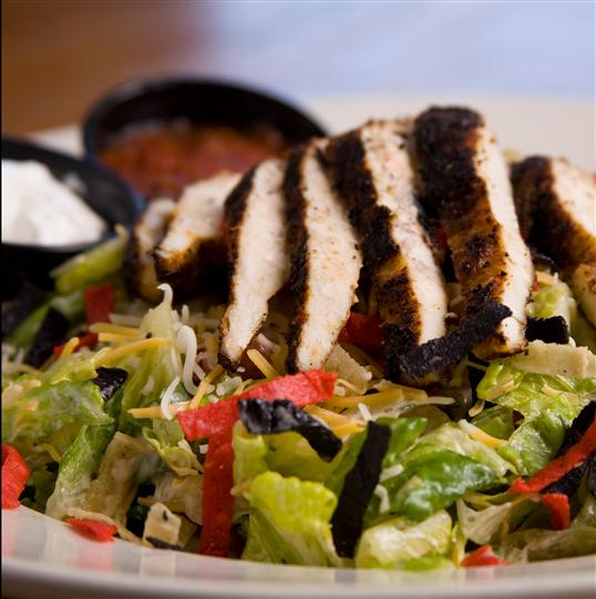 Grilled chicken topped on salad
