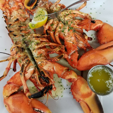Two whole cooked and seasoned lobsters with lemon and butter sauce
