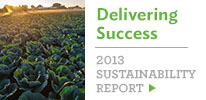 ---- 2013 Sustainability Report (large)
