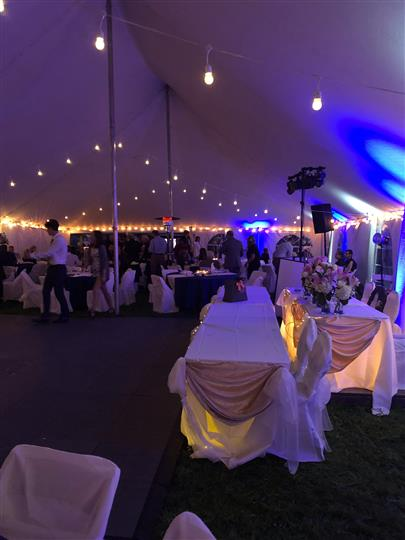 view inside tent at night purple lights party going on