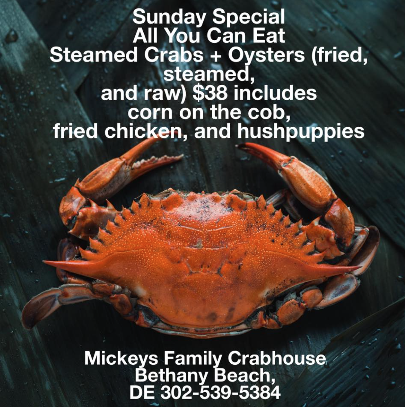 Sunday Special. All you can eat. Steamed crabs + oysters (fried, oysters and raw) $38 included corn of the cob, fried chicken and hush puppies.