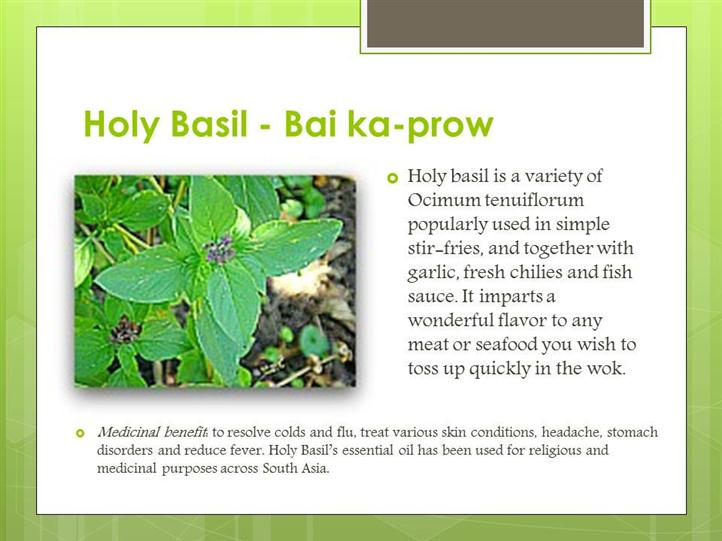 holy basil ingredient