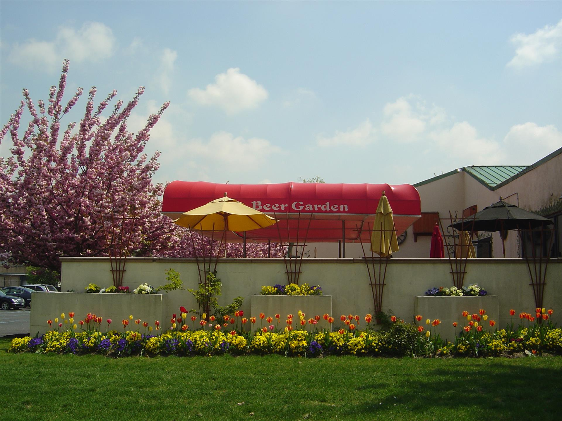 Outdoor view of beer garden umbrella and flowers