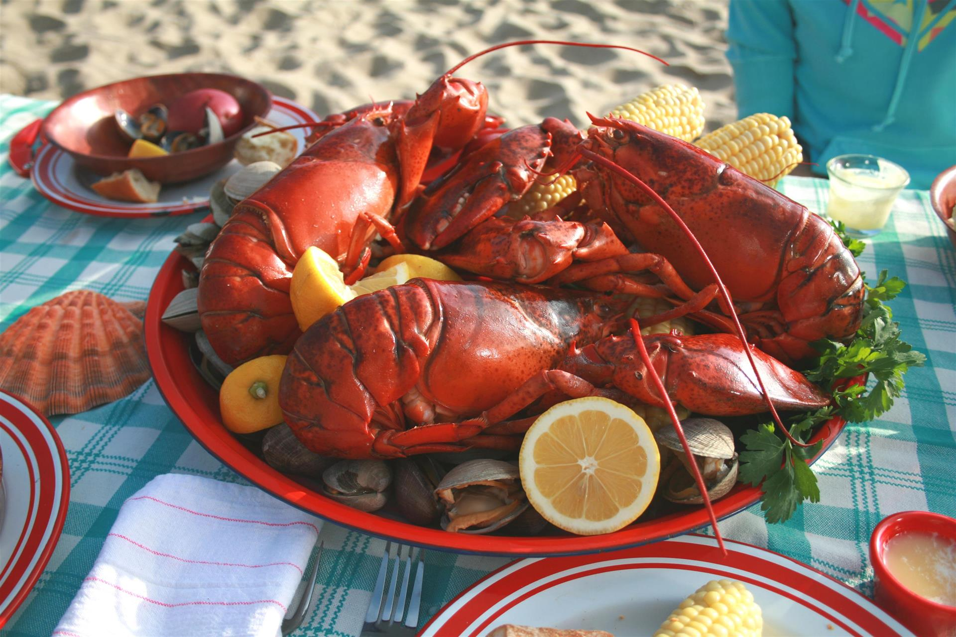 three lobsters on a plate with clams, mussels, corn on the cob and orange wedges