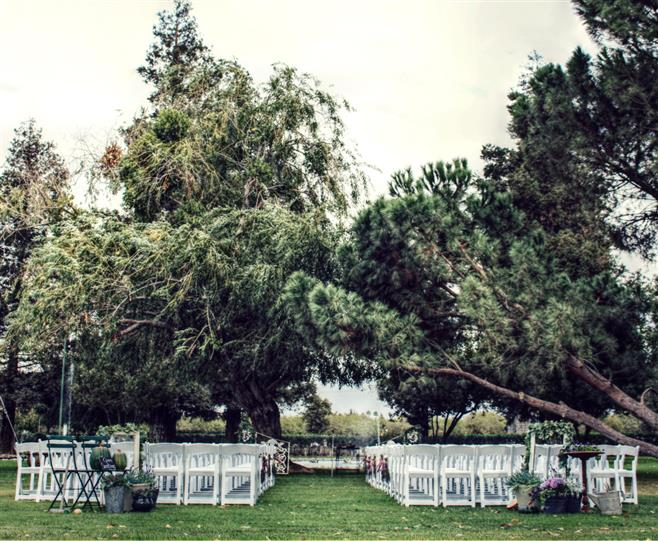 Fruit Yard Wedding 6