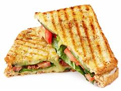 "<font size = ""+2"">Paninis</font>"